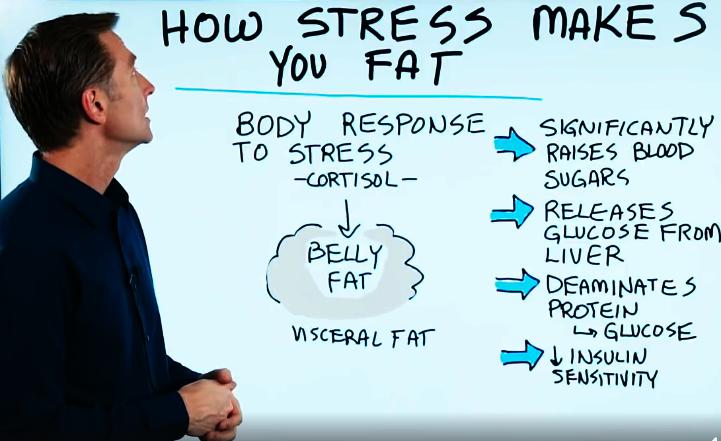 Blog - Stress - 1a